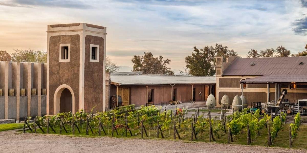Arquitectura Bodega Toneles